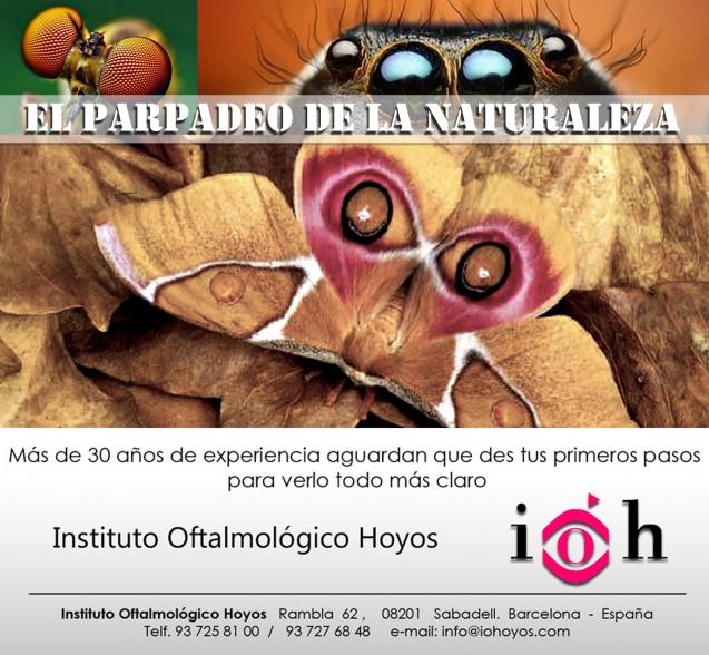 El Parpadeo de la Naturaleza «Los ojos de mariposa»